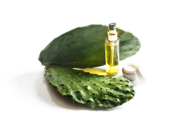 Barbary Fig Oil: One of the Most Valuable Oils in the World